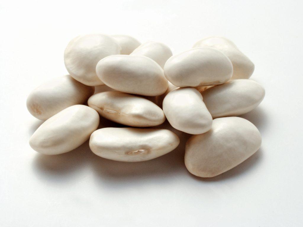 لوبیا سفید